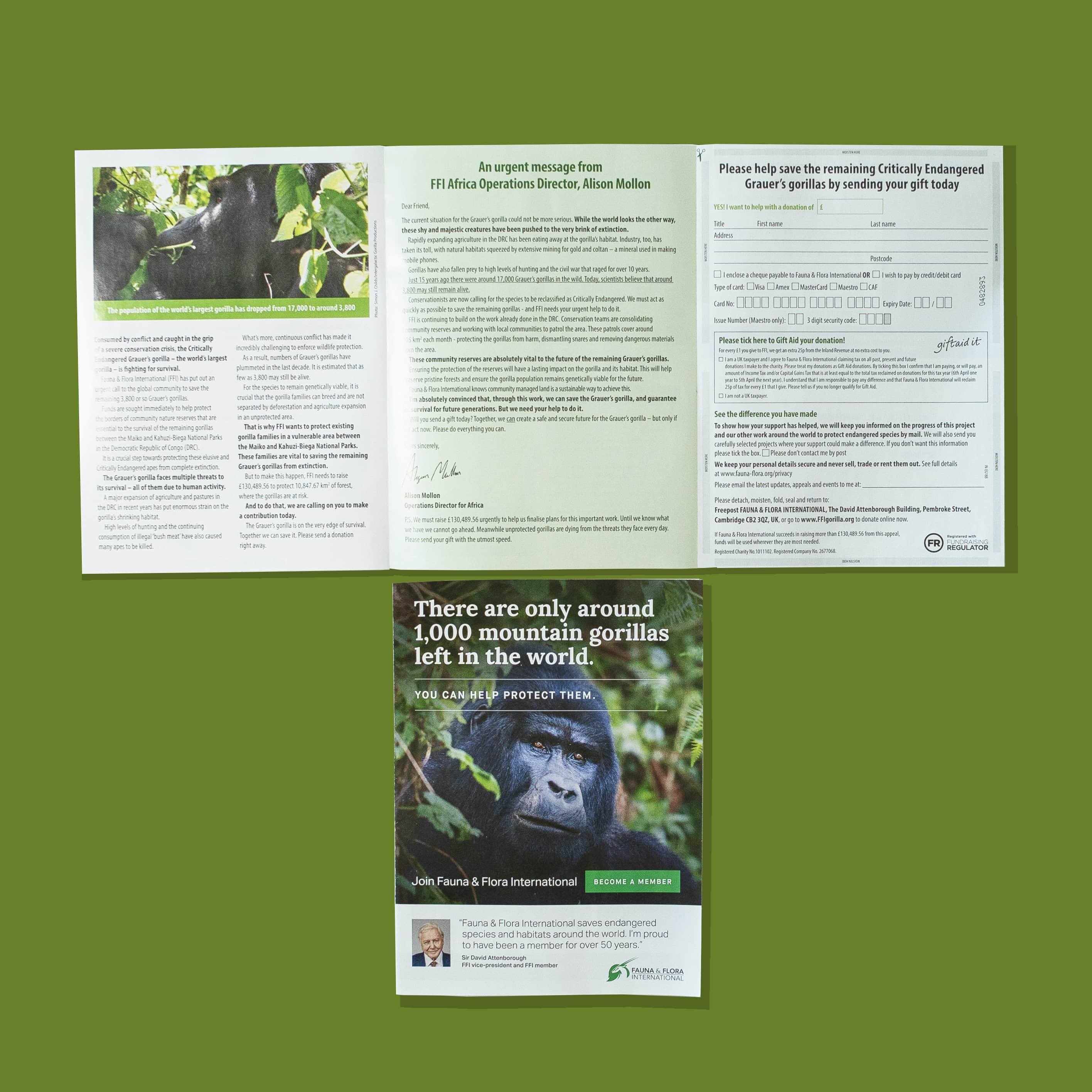 Fauna & Flora Campaign